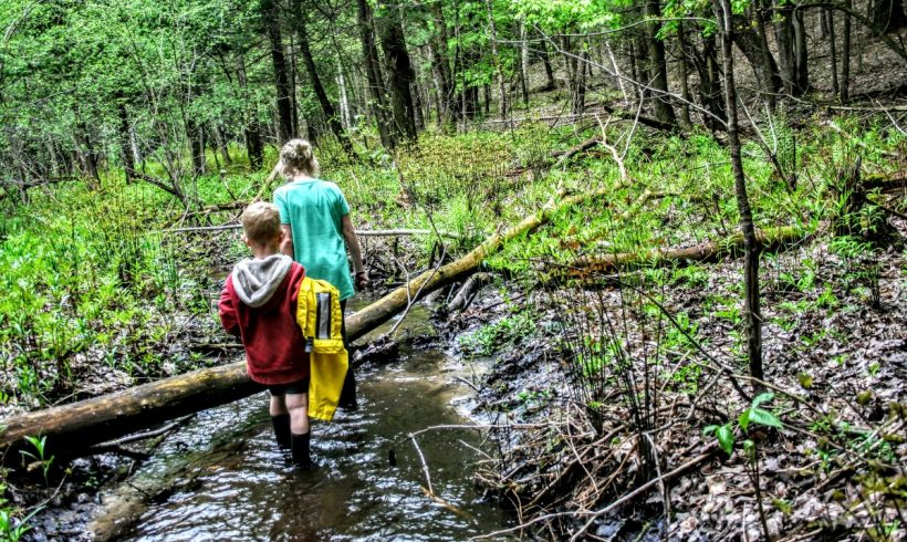 Bring Nature Play into Every Day